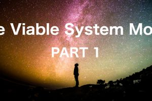 The Viable System Model – Part 1
