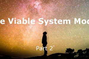 The Viable System Model – Part 2