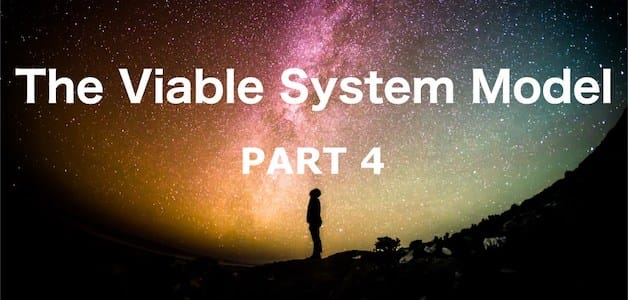 The Viable System Model – Part 4